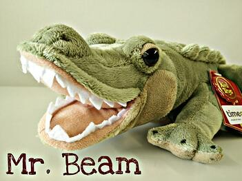 Mr_Beam_Alligator-768x576.jpg